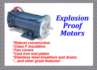Explosion proof dc motors for industrial uses for Explosion proof dc motor